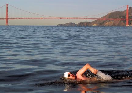 2017-11-04 18_18_53-Swimming Holidays Alcatraz, San Francisco _ SwimTrek