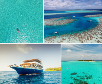 2018-11-18 10_45_17-Maldives Swimming Vacation _ SwimTrek.png