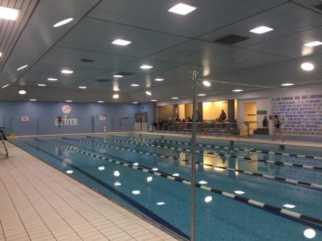 The quiet before the swim